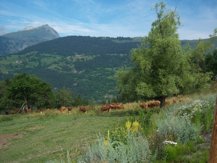 *** La Savoie... ***